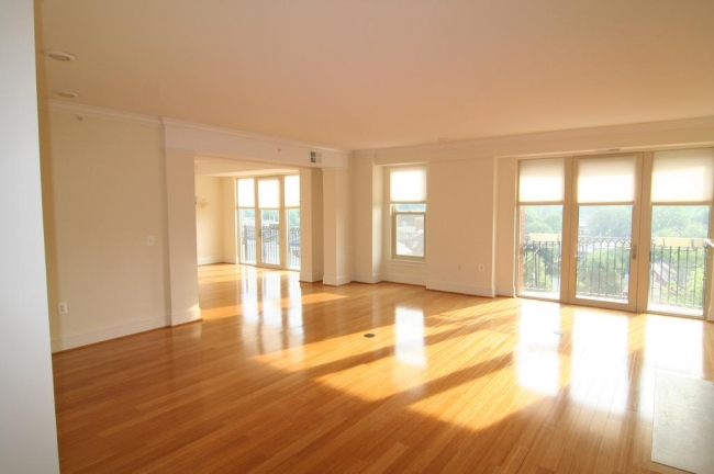 Edgemoor At Arlington Condos For Sale Offer Bright, Sun-filled Rooms