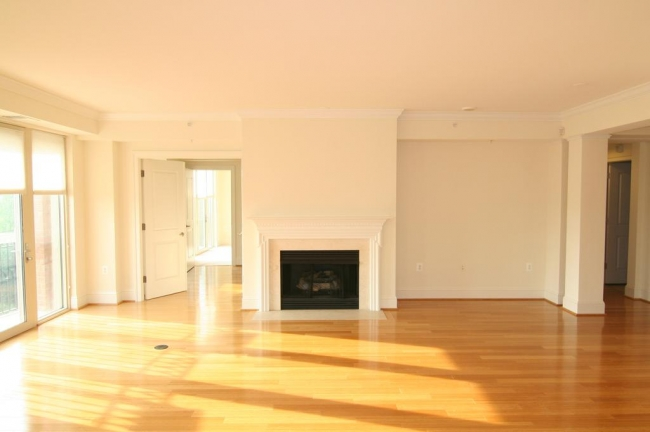 Edgemoor At Arlington Condo Residence For Sale With Fireplace